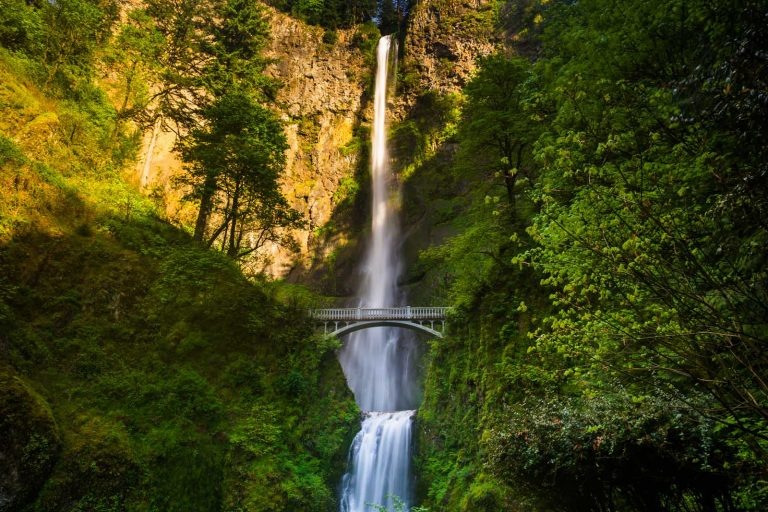 12 Best Hikes in Oregon That will Blow Your Mind